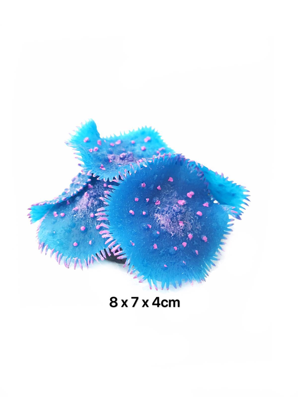 Natural Reef Series Y105
