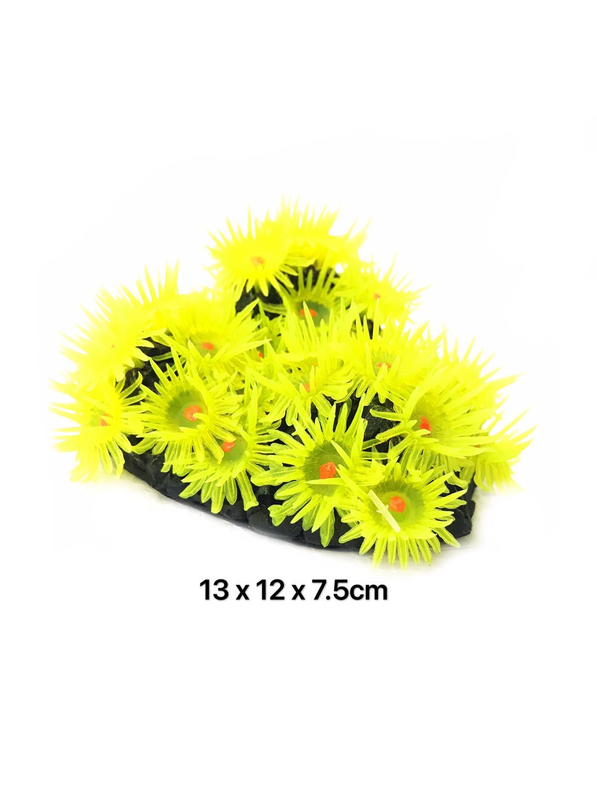 Natural Reef Series Y108