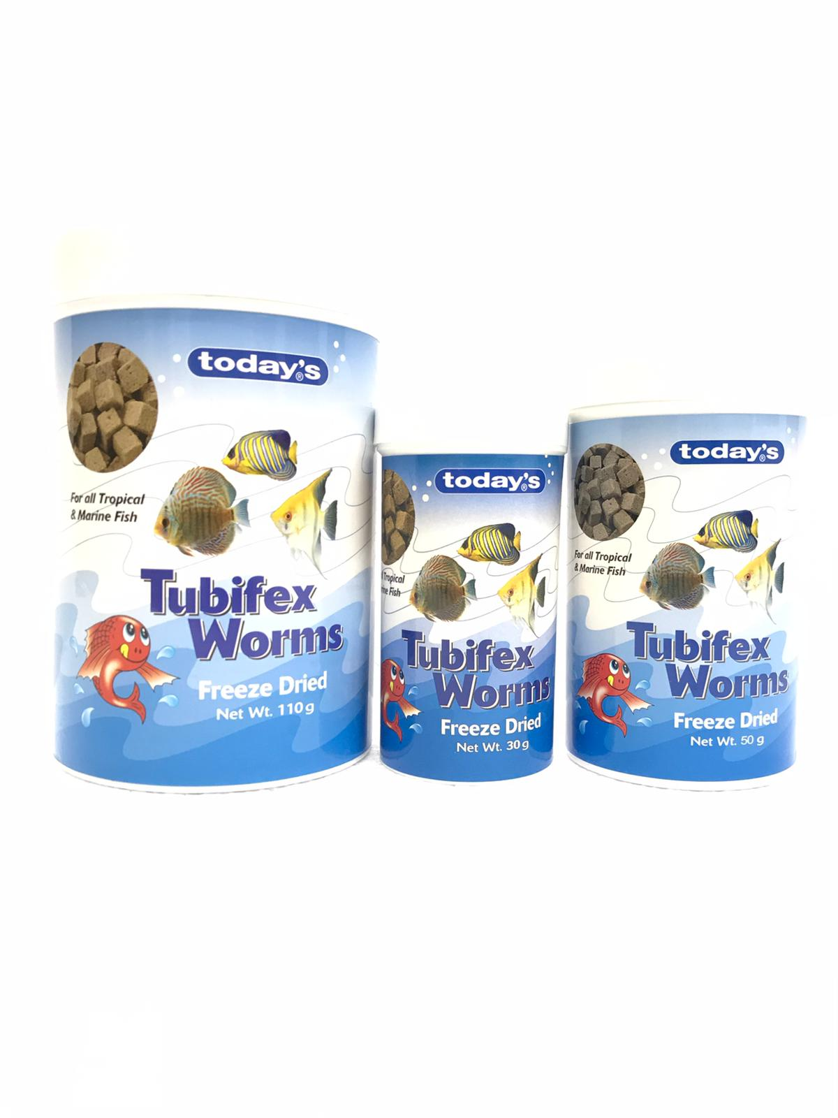 Today Freeze Dried Tubifex Worms
