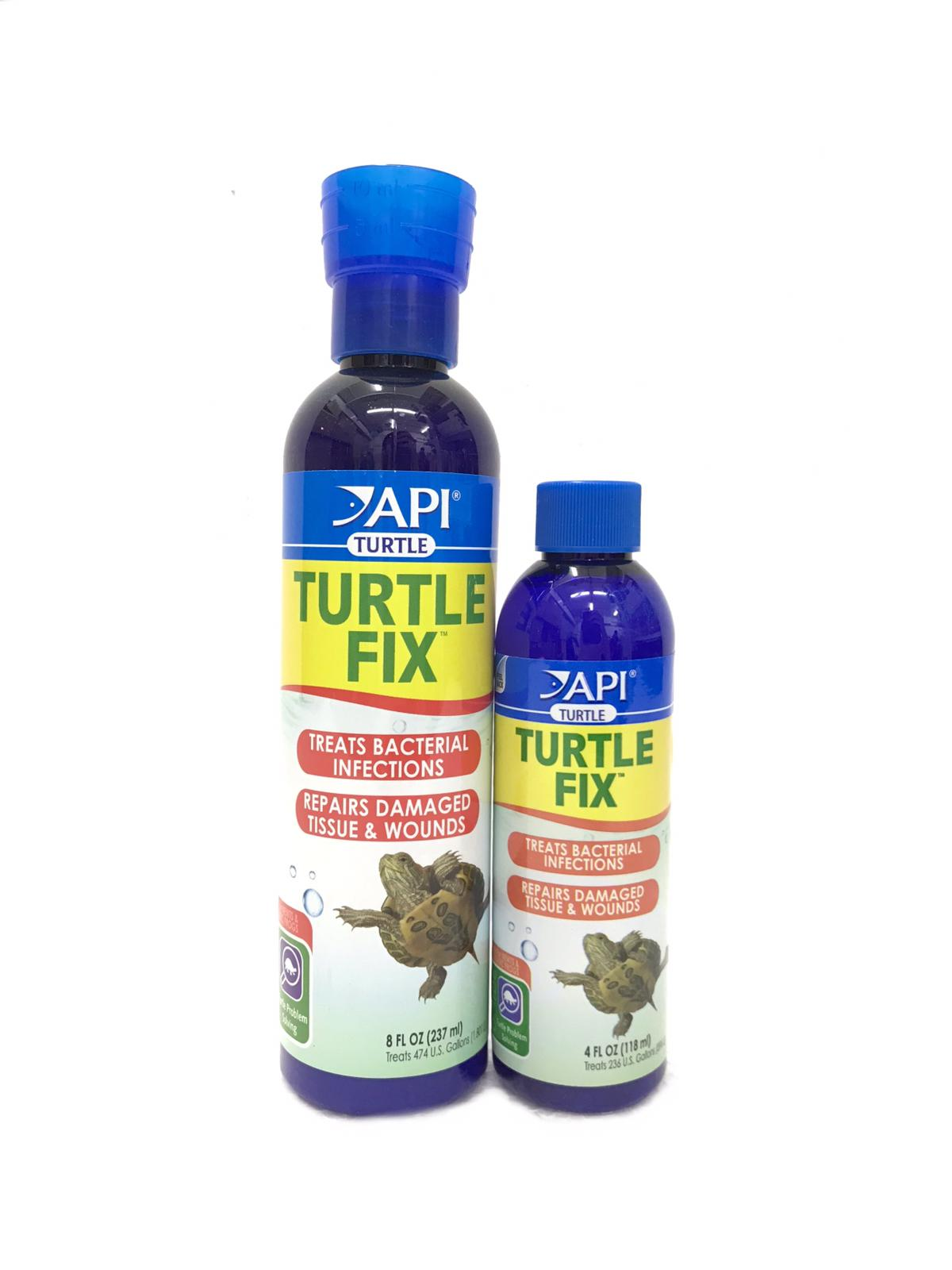 API Turtle Fix
