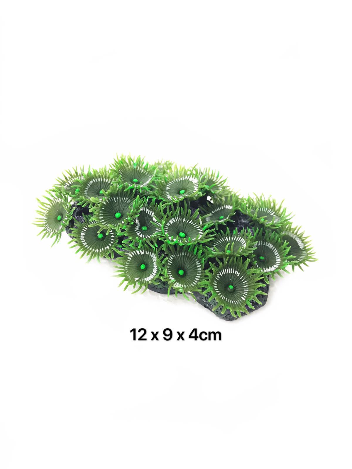 Natural Reef Series Y109