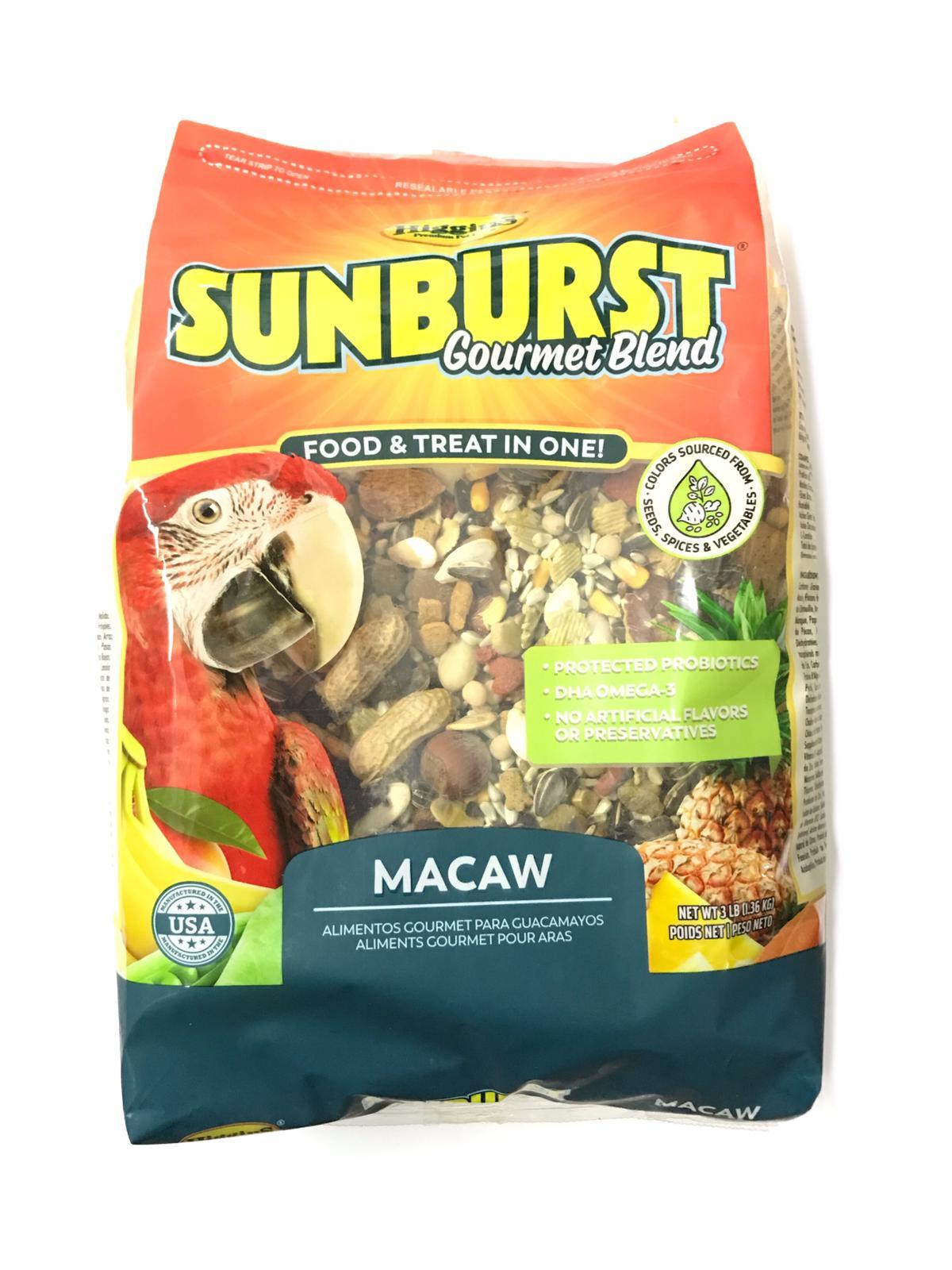 Higgins Sunburst Macaw